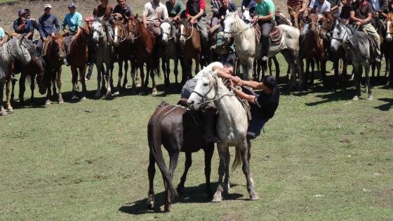 Two horsemen wrestle.