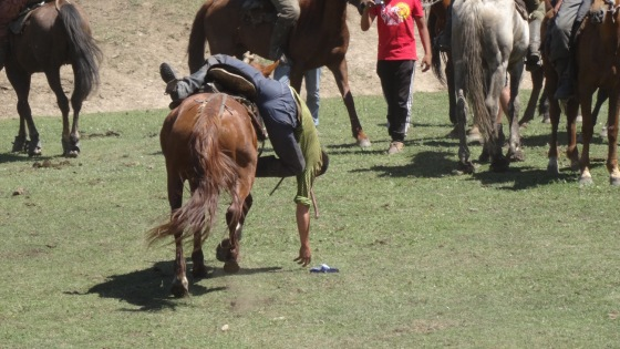 A horseman attempts to pick up a coin from the ground at a full gallop.
